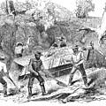 California Gold Rush, 1860 by Granger