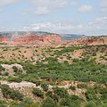 Caprock Canyon State Park  by Ruth  Housley