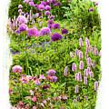 Castle Gardens by Margie Wildblood