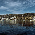 Catalina Island by Mountain Dreams