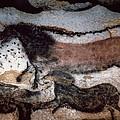Cave Art by Granger