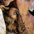 Cave Art: Horse by Granger