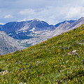 Cottonwood Pass And The Colorado Continental Divide by Steve Krull