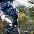 Country Railroad Crossing by Richard Siggins