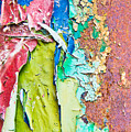 Cracked Paint by Tom Gowanlock