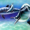 3 Dolphins by Robert Salyers