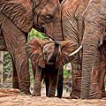 Elephants by Marvin Blaine