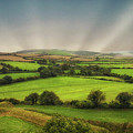 English Countryside by Martin Newman