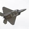 F-22 Raptor by Sebastian Musial