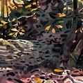 Fallen Oak by Donald Maier