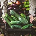Farmer With Vegetables by Mythja Photography