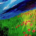field of Poppies by Misty VanPool