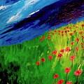 field of Poppies by Misty VanPool