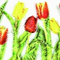 Flower Frame Border by Robert Chlopas