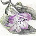 Purple Flower by Yana Sadykova