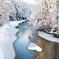 Fresh Snowfall Gauley River by Thomas R Fletcher