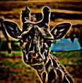 Giraffe by David Pine