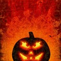 Halloween Pumpkin by Sarah Kirk