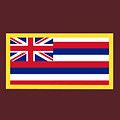 Hawaii Flag by Frederick Holiday