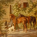 Horses At The Porch by Mountain Dreams