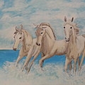 3 Horses by Janene Hall