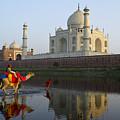 India's Taj Mahal by Michele Burgess