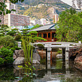 Japanese Garden In Monte Carlo by Elena Elisseeva