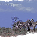 Kilimanjaro by Larry Linton
