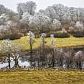 Landscape by Elmer Jensen