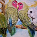 Flygende Lammet   Productions             3 Love Birds Perched by Sigrid Tune