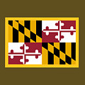 Maryland Flag by Frederick Holiday