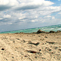 Miami Beach by Amanda Barcon