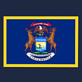 Michigan Flag by Frederick Holiday