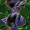 3 Neon Calla Lillies by Gary Brandes