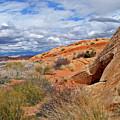 Nevada Desert by Ira Marcus