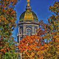 Notre Dame's Golden Dome by Mountain Dreams