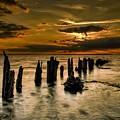 Ocean by Bert Mailer