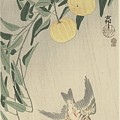 Ohara Koson by Eastern Accent