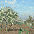 Orchard In Bloom by Camille Pissarro