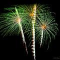 3 Palm Trees Fireworks by Brian Tada