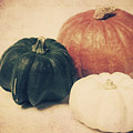 Three Pumpkins by Angela Doelling AD DESIGN Photo and PhotoArt