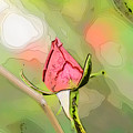 Red Garden Rose Bud by Humorous Quotes