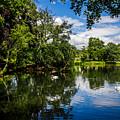 Roath Park Lake by Mark Llewellyn
