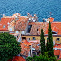 Rovinj - Croatia by Anthony Dezenzio
