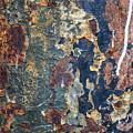 Rust Closeup  by Vladi Alon
