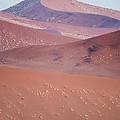 Sand Dune, Sossusvlei, Namib Desert by Panoramic Images