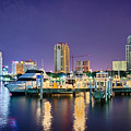 St Petersburg Florida City Skyline And Waterfront At Night by Alex Grichenko