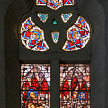 Stained Glass At The Manizales Cathedral In Colombia by Adam Rainoff