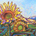 3 Sunflowers by Nadi Spencer