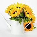 Sunflowers by Natalia Klenova